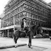 Crystal Cowboy , Drew Lustman