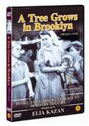 Tree Grows in Brooklyn (1945) [Import] , Peggy Ann Garner