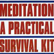 Meditation: A Practical Survival Kit (CD) at Kmart.com