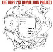 Hope Six Demolition Project , PJ Harvey