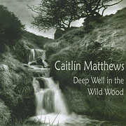 Deep Well in the Wildwood (CD) at Kmart.com