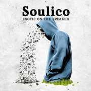 Exotic on the Speaker (LP / Vinyl) at Kmart.com