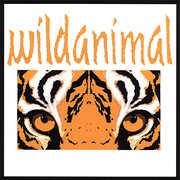 Wild Animal (CD) at Sears.com