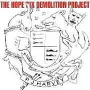 The Hope Six Demolition Project , PJ Harvey