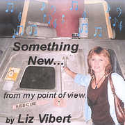 Something New from My Point of View (CD) at Kmart.com