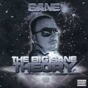 The Big Sane Theory (CD) at Kmart.com
