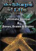 SHAPE OF LIFE 4: ULTIMATE ANIMAL & BONES (DVD) at Kmart.com