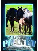 Third Planet: The Beginnings of Life in the Great Savannah (DVD) at Sears.com