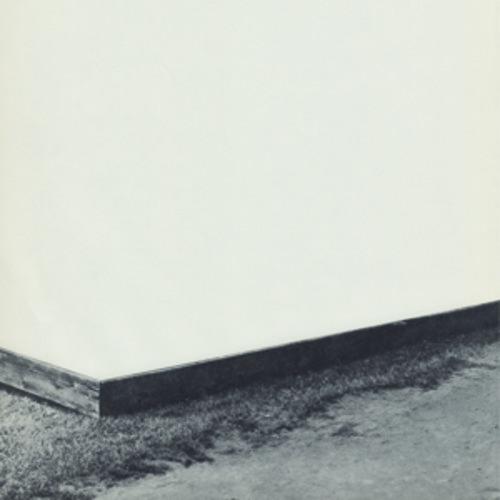 Diminshed Composition - Willamette (2016, Vinyl NEW)