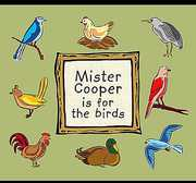 Mister Cooper Is for the Birds (CD) at Kmart.com