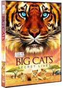 Big Cats: Secret Lives (DVD) at Kmart.com