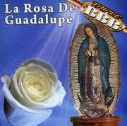 Rosa de Guadalupe (CD) at Sears.com