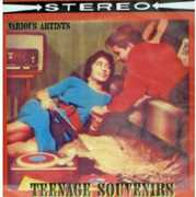 Teenage Souvenirs - Rare Rock in Stereo 30 / Var (CD) at Sears.com