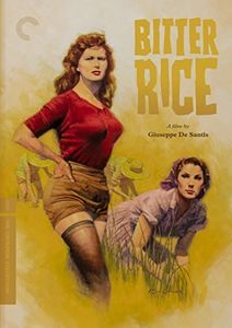 Bitter Rice (Criterion Collection) , Vittorio Gassman