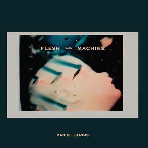 Flesh & Machine - Daniel Lanois