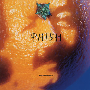 Picture of Nectar (LP) - Phish