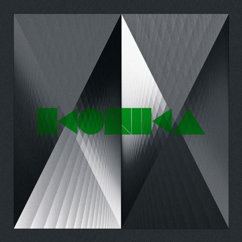 Idiot-Idiot-Ikonika-2010-Vinyl-NUOVO