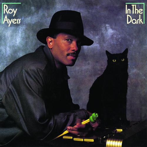 In The Dark - Roy Ayers (2012, CD NEU) Lmtd ED.