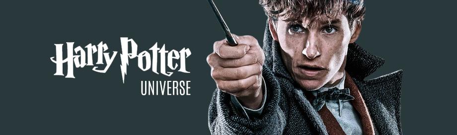 Harry Potter Universe